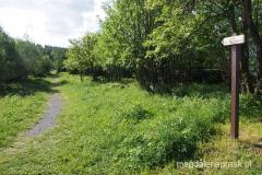 początek zielonego szlaku z Przełęczy Okraj na Łysocinę