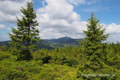zielonym szlakiem na Łysocinę