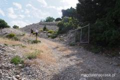 lokalna droga prowadząca przez winnice i gaje oliwne