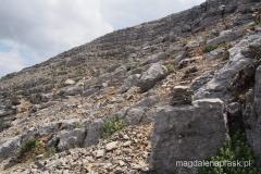 gdzieś tędy na szczyt Ataviros