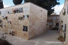 cmentarz w pobliżu Groty Mlecznej