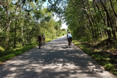 piękna droga na terenie poligonu wojskowego - super na rower