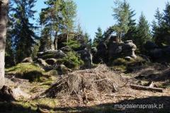 piękne formacje skalne ukryte w lesie