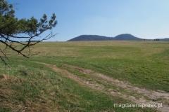 ostatnia prosta - powrót do Pasterki - wyszliśmy z lasu - widok na Szczeliniec