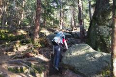 podejście żółtym szlakiem z Pasterki na szczyt Szczelińca