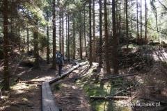 w drodze na szczyt Koruna