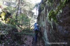 w czeskich Górach Stołowych