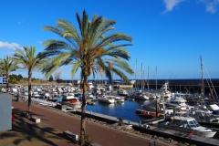 marina w Calhecie