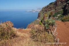 w oddali widać Funchal