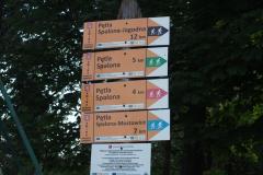 szlaki dla nart biegowych