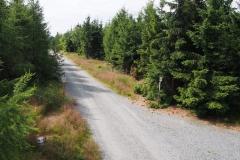 widoki z ambony na szczycie Jagodna
