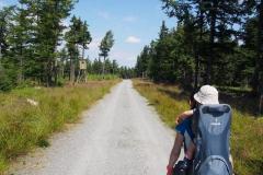 na niebieskim szlaku, schodzimy z Jagodnej