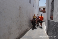 na szczyt do Akropolu można wjechać osiołkiem