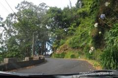 w centrum Madery drogi są wąskie, kręte i z reguły jedzie się albo do góry albo w dół