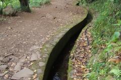 szlak prowadzi wzdłuż urokliwe lewady