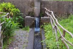 źródełko zasilające baseny z pstrągami
