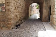 w mieście Rodos: Stare Miasto
