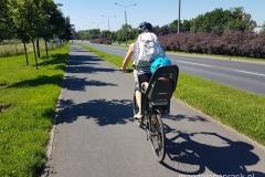 droga rowerowa wzdłuż trasy PST
