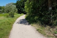 szlak rowerowy prowadzący z Rusałki do Jeziora Strzeszyńskiego
