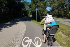 piękna droga rowerowa wzdłuż ul. Biskupińskiej