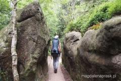 w drodze na szczyt Szczelińca