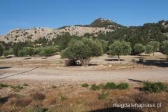 wzgórze, na którym znosi się stary klasztor Moni Panagias Tsampikas