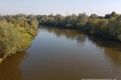 Warta widziana z Mostu Lecha