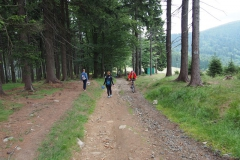 na szlaku spotykaliśmy nie tylko turystów pieszych ale też ludzi zbierających jagody i rowerzystów