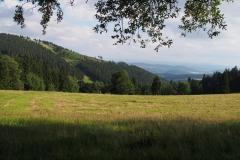 widok na wgórza Gór Sowich