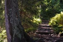 najbardziej efektowny szlak na Babią Górę - Perć Akademików