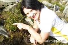 koniec sierpnia to cudowna pora na wycieczki górskie - w Beskidach pełno jest jagód