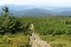 zejście z Małej Babiej Góry