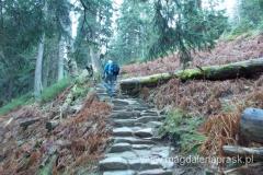 Perć Akademików - najkrótsza droga na szczyt Babiej Góry