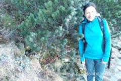 pierwsze spotkanie z oznakami zimy - oszroniona kosodrzewina