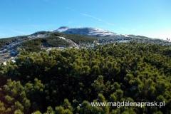 pięknie oszroniony szczyt Babiej Góry