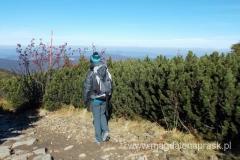 podążając granią w kierunku Małej Babiej Góry