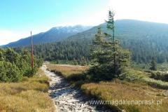 szlak po głównej grani; w oddali Babia Góra