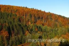 jesień w górach jest niezwykle malownicza