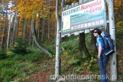 wkraczamy na teren Rezerwatu Barania Góra - na szczyt już niedaleko