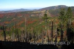 Beskid Śląski w jesiennej odsłonie