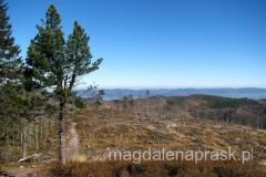 na szczycie Baraniej Góry - 1.220m npm