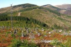 okolice Baraniej Góry