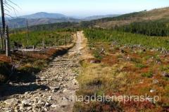 piękny jesienny Beskid Śląski