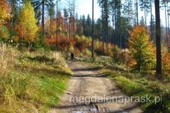 Beskid Śląski w jesiennym wydaniu