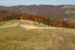 piękna złota polska jesień - najbardziej malownicza jest w górach