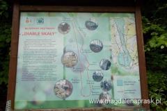 tablica informująca o ścieżce dydaktycznej w Rezerwacie Diable Skały