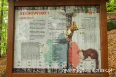 tablica informacyjna w Rezerwacie Diable Skały