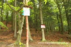 w okolicy Bukowca znajduje się kilka szlaków turystycznych