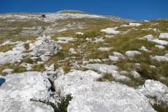 góry tutaj są bardzo suche i pełne białych skał