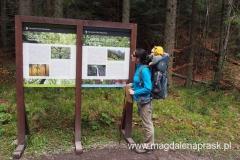 początek trasy - tablice informacyjne u wlotu do Doliny Strążyskiej